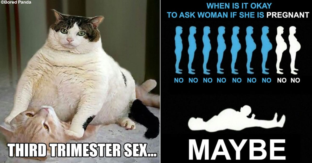 20 Humorous Memes That Sum Up Pregnancy